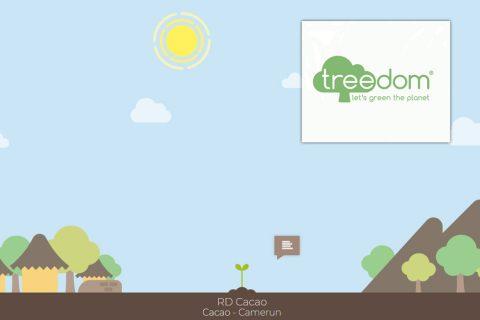 RD Cacao: il nostro albero in Camerun